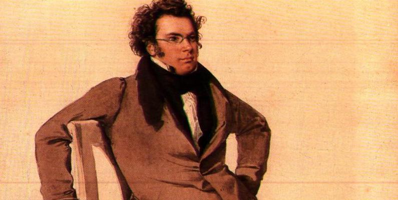 Schubert's Delights